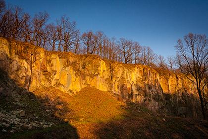 Steinbruch mit Bäumen im Abendlicht