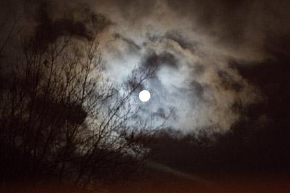 leuchtender Mond in dunkler Nacht
